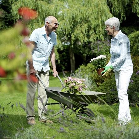 הדברה אורגנית לגינה